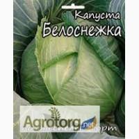 Семена Капусты весовые и пакетированные от производителя