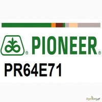 Семена, гибрид, посевной материал подсолнечника под Экспресс Пионер ПР64Е71