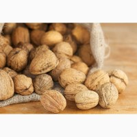 Покупаю грецкий орех в скорлупе, урожай 2017
