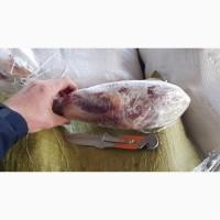 Продам голяшку говяжью /голяшка ялова