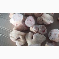 Продам фисташку свиную. Ноги свиные обрезные