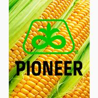 Семена кукурузы Пионер DuPont Pioneer