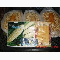 Продам насіння цукрової кукурудзи