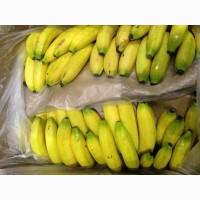 Продам бананы свежие Эквадор
