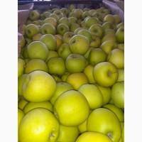Яблоко отличного качества