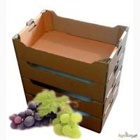 Виноградный лоток усиленный