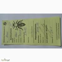 Пчеломатки линии Бакфаст B 366(MD) ИО