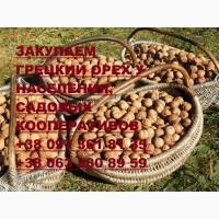 Закупаем грецкий орех у населения, цена зависит от качества