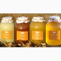Закупаем мед оптом по хорошей цене