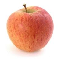 Продам яблоки сорта Чемпион. Опт