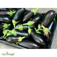 Реализую овощи оптом, прямой импорт с Турции