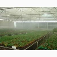 Охлаждение и увлажнение воздуха для теплиц ферм