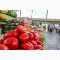 Куплю овощи. Оптом крупными обьёмами.ОПТОВАЯ ЦЕНА 5 - 10 грн/килограмм, или договорная