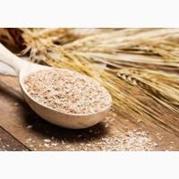 Продам висівку пшеничну
