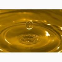 Предприятие-производитель приобретет масло подсолнечное нерафинированное 1 сорта