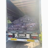 Продам картоплю мережевої якості