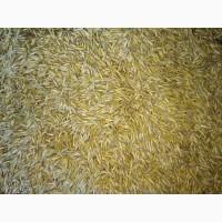 Продам овес фуражный по 5.50 гривен за кг, 30 кг в мешке. Возможн доставка