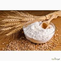 Продам мука пшеничная