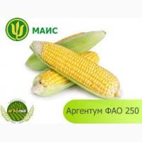 Купить семена кукурузы ВН 63, Гран 6, Гран 310, Амарок, Моника, Здобуток