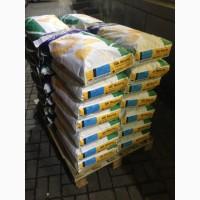 Акционное предложение на семена Неома Тунка Мегасан 5580