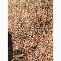 Продам отходы кукурузы после сушки(шелуха)
