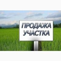 Промзона Киев    Продам свой Участок 1.5 га    с.Шпитьки 17 км    Продажа земли