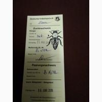 Пчеломатки бакфаст и карника Винтерсбах