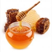 Продам мед подсолнух ОПТОМ