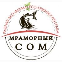 Продам мраморный(африканский) сом