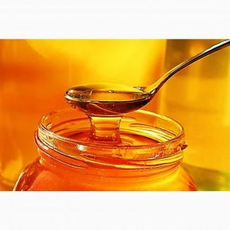 Закупаем мед Дорого