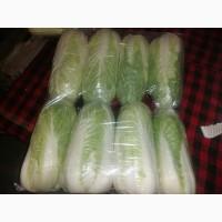Продам пекінську капусту харошої якості