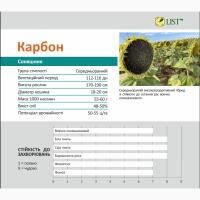 КАРБОН гибрид подсолнечника (Семена подсолнечника Карбон)