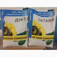 Высокоурожайные семена подсолнуха Октава и Дуэт - Агросемсервис ЮГ Украина