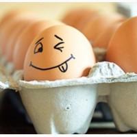 Продам яйцо куриное, перепелиное и меланж