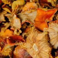 Мухомор Красный (Amanita Muscaria) Шляпки Сушеные