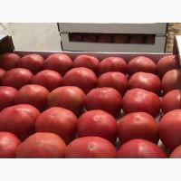 Продажа овощей под клиента с оптового рынка в Великие Копани