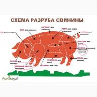 Продам полутуши свиные