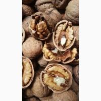 Продам грецкий орех на экспорт калибр 28+, 30+ урожай 2018