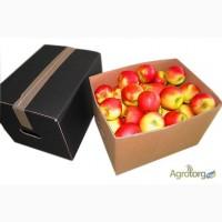 Яблочный ящик (телескоп) Комплект крышка-Дно