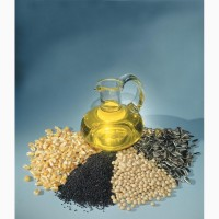 Куплю масличные. Скупка масличных культур