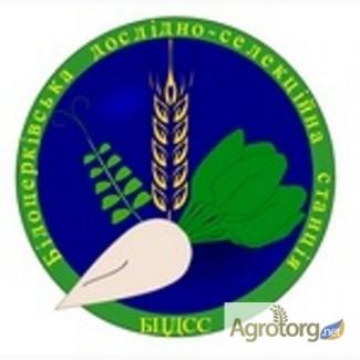 Продаємо посівмат озимої пшениці