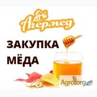 Закупка мёда по Украине