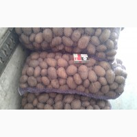 Продам картошку 5