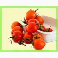 Купить в больших объемах помидоры