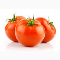 Куплю помидор оптом от производителей