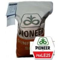 Посевной материал семечка Пионер Е25