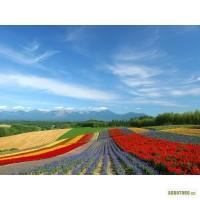 Продам действующее-прибыльное сельхозпредприятие с плодородной землёй