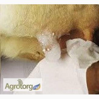 Пенное средство для обработки вымени перед доением
