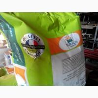 Семена подсолнечника ЕС Белла Евралис (импорт)