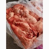 Продам легкое свиное, Запорожье